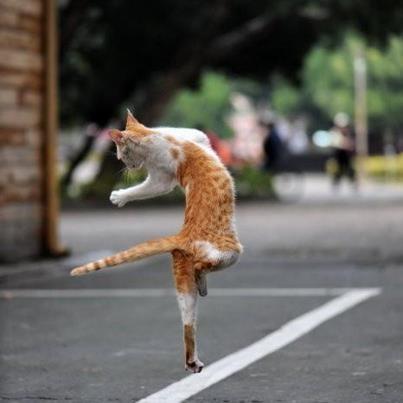 Боса по асфалта, вървя си ...