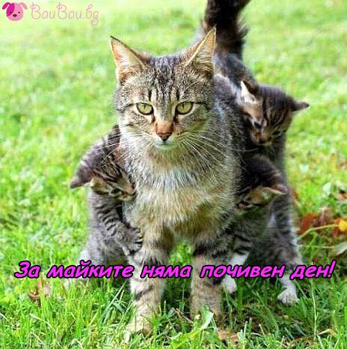 Да бъдеш майка