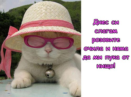Да погледнем на живота през розови очила