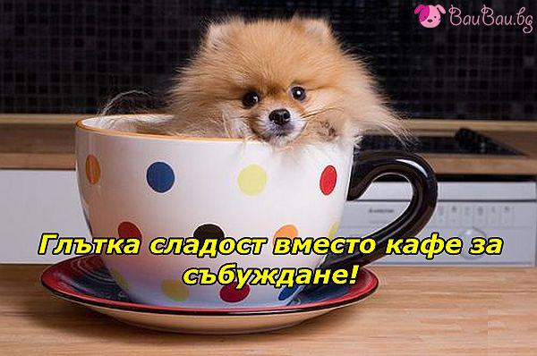 Вместо кафе