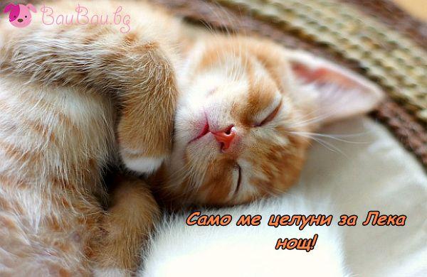 Готов за приспивна целувка