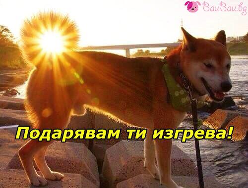 Сноп от слънчеви лъчи