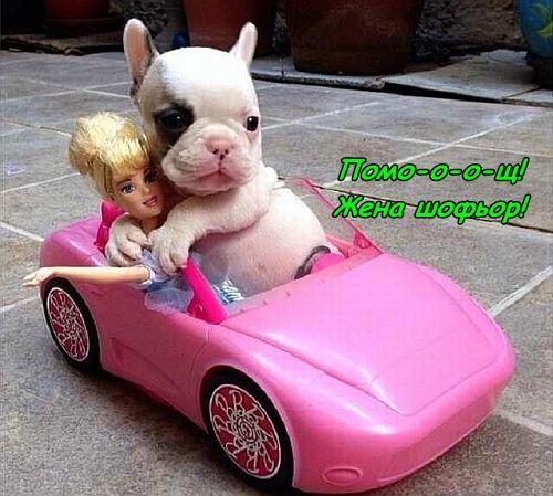 На разходка с колата :)