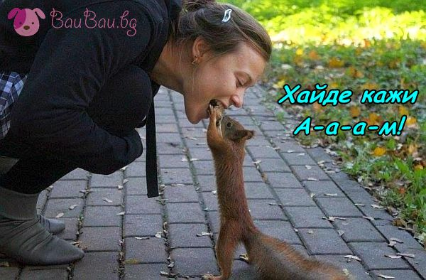 Кой казва, че животните не са грижовни към хората?