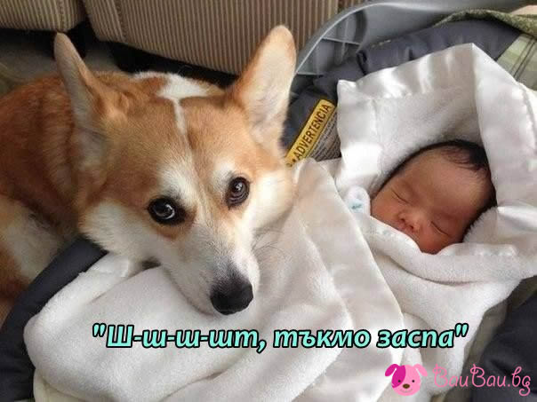 Детегледачка