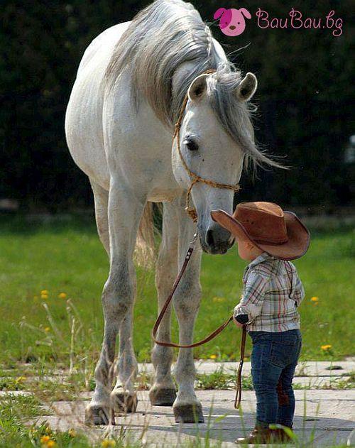 Готов да язди кон!