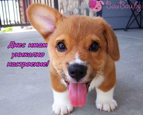Не забравяйте да се усмихвате!