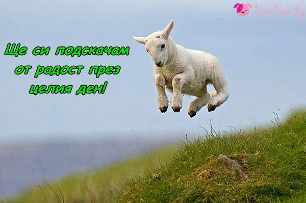 Нов ден, изпълнен с радост