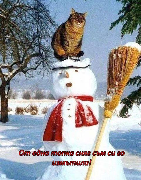 Пазителката на зимния дух