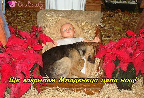 Пазителят на Младенеца