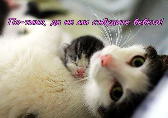 Под зоркия поглед на мама