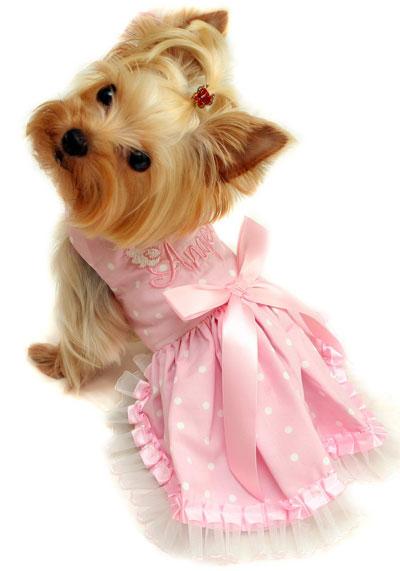 Розовата хубавелка