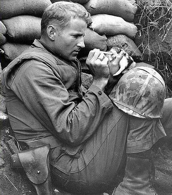 Сержант Франк Прейтър храни двуседмично котенце в разгара на Корейската война, 1952 година