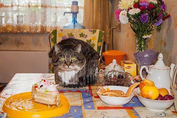 Торта Писан