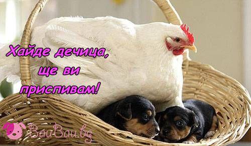 В обятията на грижовна мама