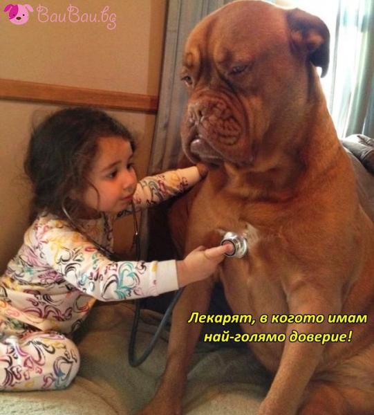 Бъдещ ветеринарен лекар
