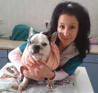Респираторни инфекции при кучетата и изграждането на имунитет