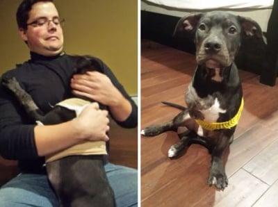 Полицай спаси ранено кученце, изхвърлено от кола и оставено да умре