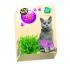"""""""Lolo pets"""" - Трева за котки, 100 грама"""