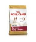 Royal Canin Cavalier King Sharles Junior  1.500кг