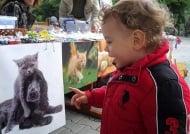Заповядайте на благотворителния базар за бездомни животни в Стара Загора