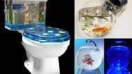 Необичайни и креативни аквариуми за рибки