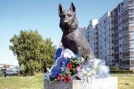 История за верността на едно куче, в името на което издигат паметник
