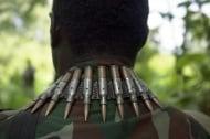 Продължава избиването на диви животни от бракониери и военни формирования в Африка