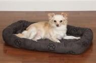 Обучение на кучето: Урок №5. Научете кучето да отива на своето място