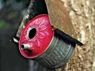 Как да превърнем старите си вещи в къщички за птици?
