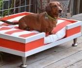 Лесен начин, по който да направим диван за кучето си