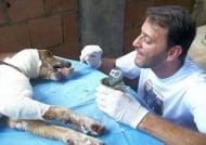 Няма да повярвате на очите си - мъж с добро сърце спасява като по чудо умиращо куче