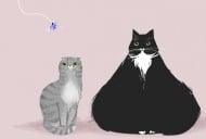 Котка, тежаща 16 кг бе осиновена от семейство в Сейнт Луис