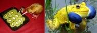 Забавни факти за животните, за които едва ли знаете