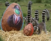 Великденска изненада за животните в зоопарка в Буенос Айрес