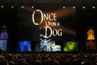 Великолепно шоу в София направи световноизвестният дресьор на кучета Сизър Милан