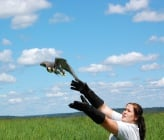 Заповядайте на освобождаването на птици на 16 август в София