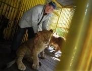 Дядо на 82 години се опитва да спаси зоопарка в Разград