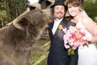 Звездата от Нат Джио, мечката гризли Брут, е най - добър приятел и кум на Кейси Андерсън