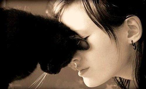 20 научни доказателства, че всеки има нужда от котка в живота си (втора част)