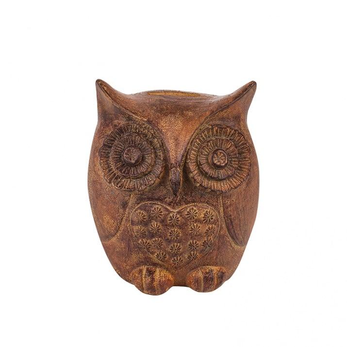 Касичка бухал - символ на дълголетие и мъдрост