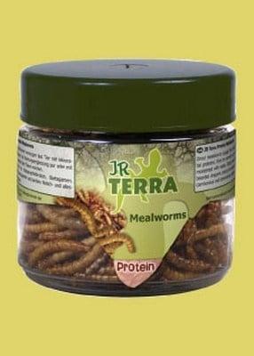 JR Terra – Бели червеи