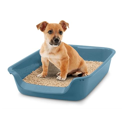 Тоалетна за малки кученца Junior 56 x 39 x 13 см., Savic