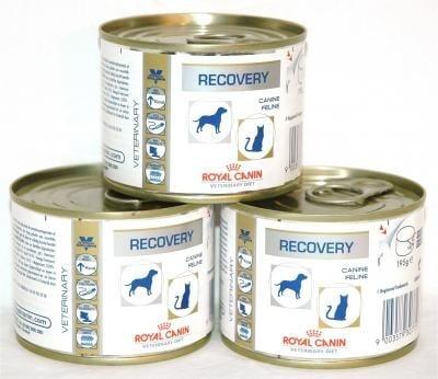 Royal Canin Recovery Cats/Dogs 0.195кг - възстановяване при кучета и котки, хранене със сонда