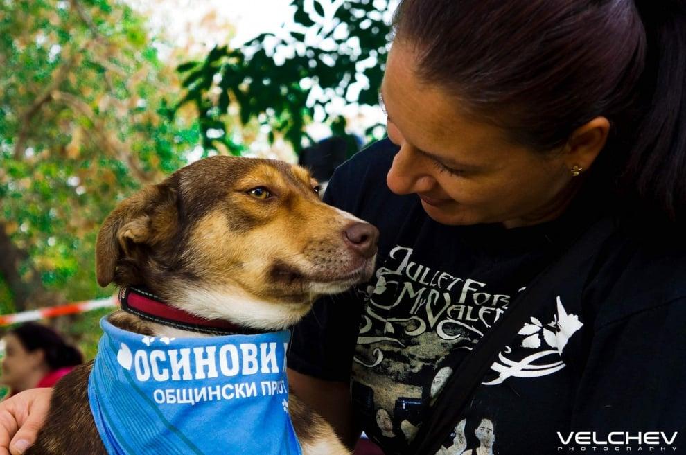Празник за деца и кучета ще зарадва децата на Стара Загора на 5-ти октомври
