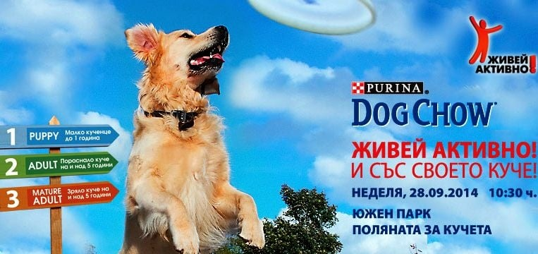 Елате със своето куче в неделя (28.09) от 10:30 в Южния парк, за да играете и спечелите награди
