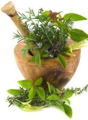Биологично - активни вещества в билките