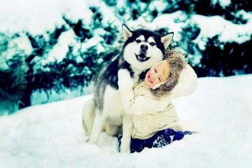 Как да се забавлявате с кучето си през зимата?