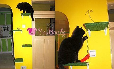 Как лесно да направим катерушка за котката си от подръчни материали?
