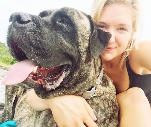 Момиче превръща последните месеци от живота на кучето си в приказка